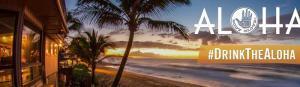Hawaii Aloha Header