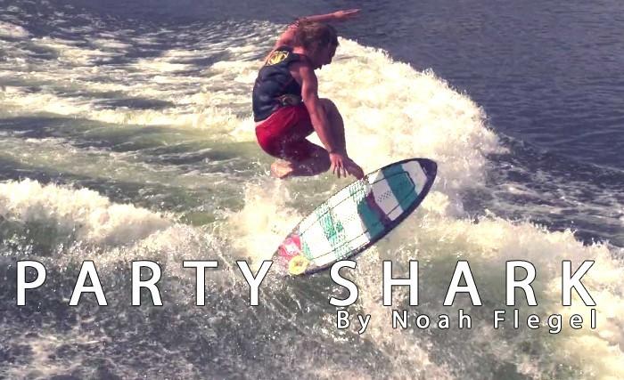 Party Shark - Noah Flegel