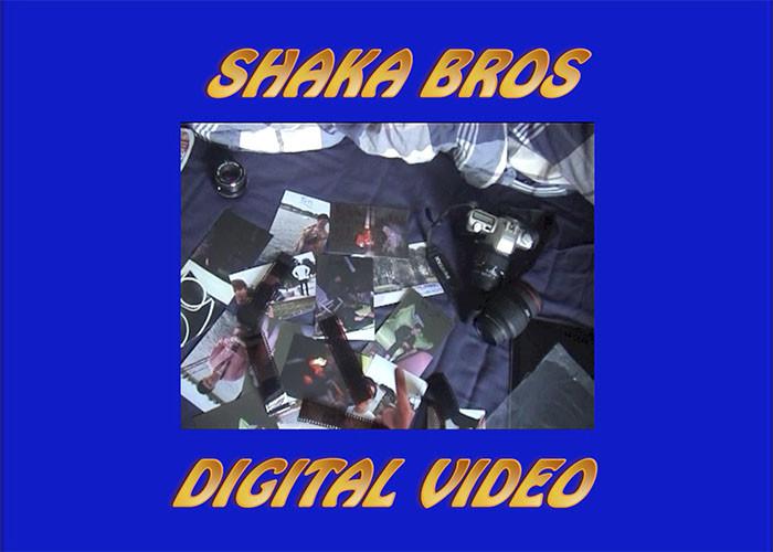 DiGiTaL SHAKA BRO'S